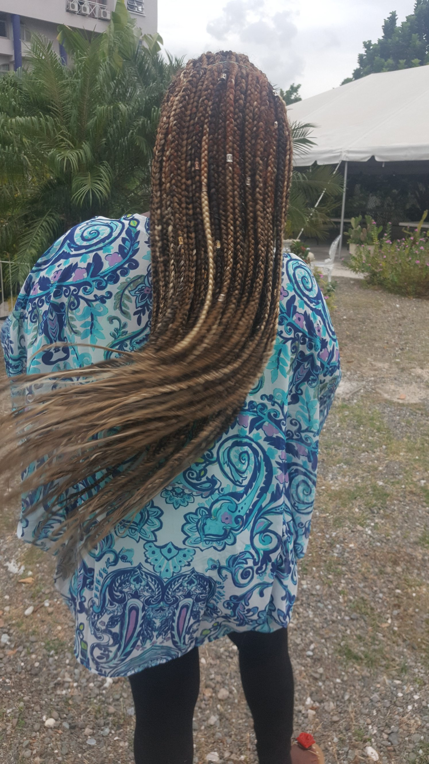 Back view of Boxed Braids